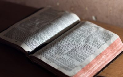 Reading My Bible Quietly to Myself, I Was Speaking Louder Than Ever Before